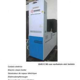 Generatore di vapore elettrico su skid