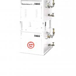 Generatore di vapore elettrico doppio