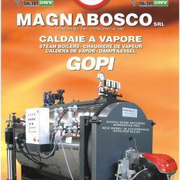 Steam Boiler presurized GOPI