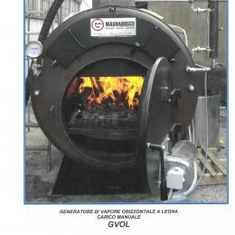 Wood heated steam generators horizontal