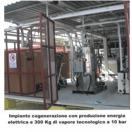 Steam generator with cogeneration