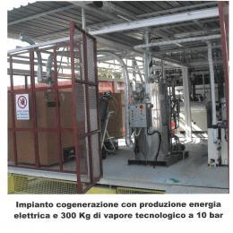 Generatore di vapore con cogenerazione