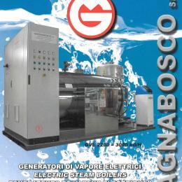 Generatore di vapore elettrico inox