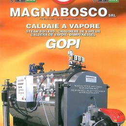 Generatore di vapore pressurizzato