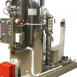Générateurs de vapeur de seconde main